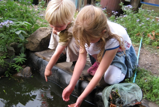Pond Dipping for 'Creepy Crawlies'...coming soon!