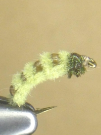 Broken Back Caddis