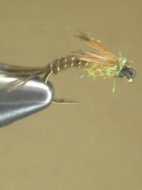 Modified Pheasant tail